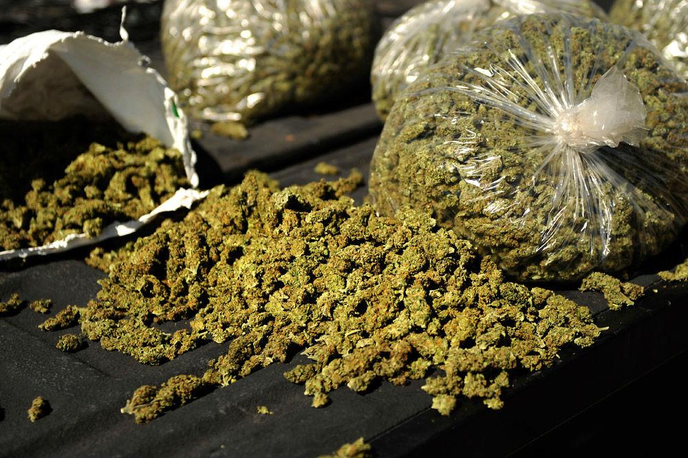 bags-weed